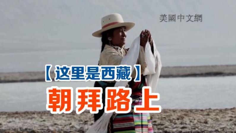 这里是西藏-朝拜路上