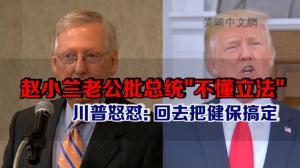 参院共和党领袖麦康奈尔批总统不懂立法 川普怒怼:给我回去把健保搞定