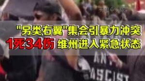 维州右翼集会演变暴力事件致1死34伤