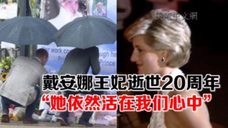 """戴安娜王妃逝世20周年 """"她依然活在我们心中"""""""