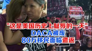 """""""这是美国历史上耻辱的一天!"""" DACA被废 80万移民面临遣返"""