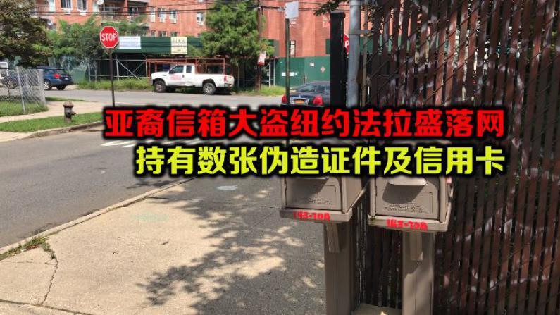 亚裔信箱大盗纽约法拉盛落网 持有数张伪造证件及信用卡