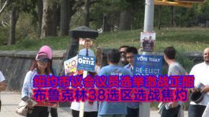 纽约市议会议员选举激战正酣  布鲁克林38选区选战焦灼