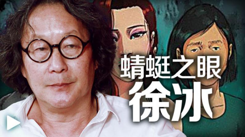 徐冰:《蜻蜓之眼》颠覆传统电影