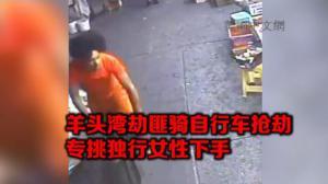 纽约羊头湾现自行车劫匪 专抢独行女性 一周作案5起