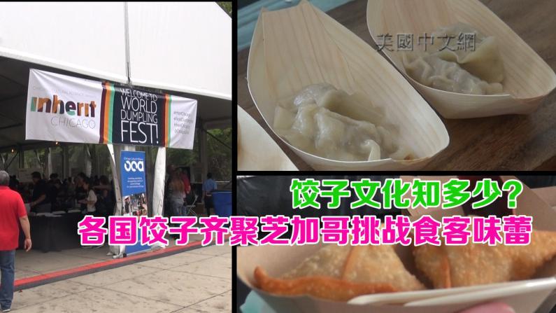饺子文化知多少? 各国饺子齐聚芝加哥挑战食客味蕾