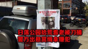 纽约日落公园拾荒老汉被刀捅获救 警方呼吁民众提供线索缉拿嫌犯