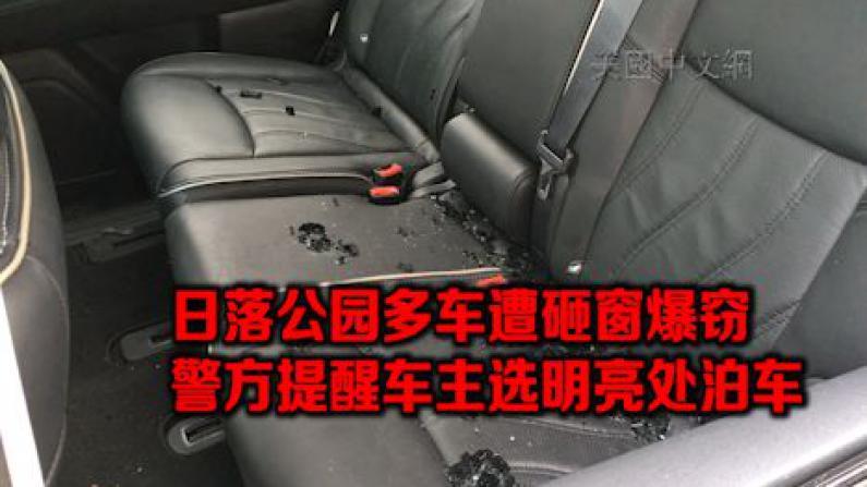 纽约布鲁克林日落公园多车遭砸窗偷窃 警方吁民众泊车不留财物