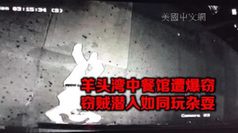 纽约羊头湾中餐馆遭入室盗窃 嫌犯深夜钻卷帘门如特技演员
