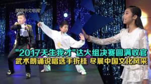 """""""2017天生我才""""达人组决赛圆满收官 武术朗诵说唱选手折桂 尽展中国文化风采"""