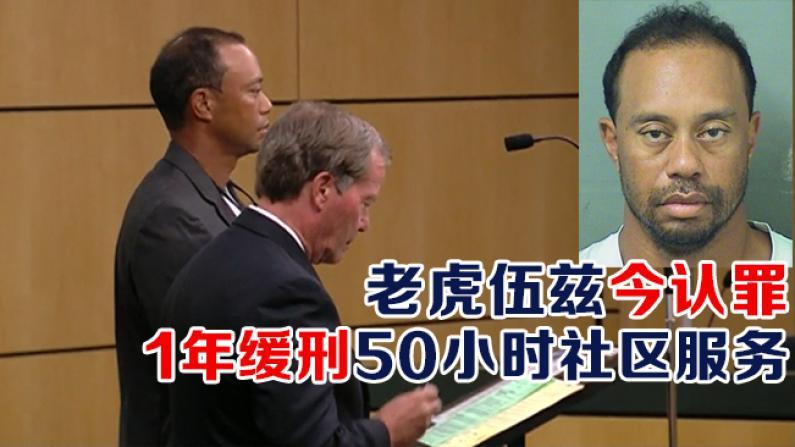 老虎伍兹今认罪 1年缓刑50小时社区服务