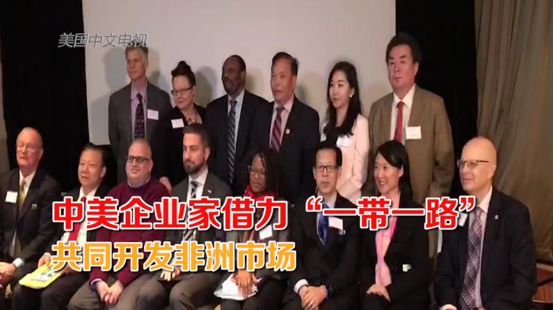 """中美企业家借力""""一带一路""""共同开发非洲市场"""