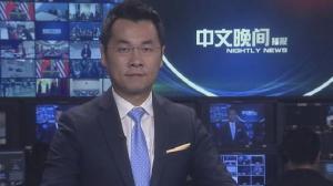 2017年11月12日中文晚间播报
