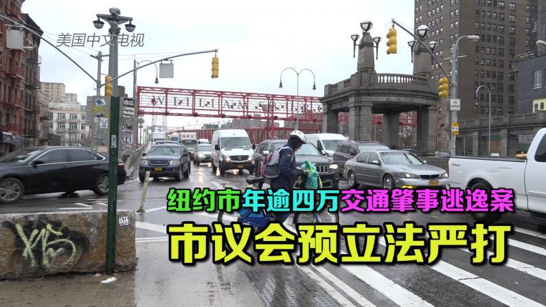 纽约市议会预立法严打交通肇事逃逸