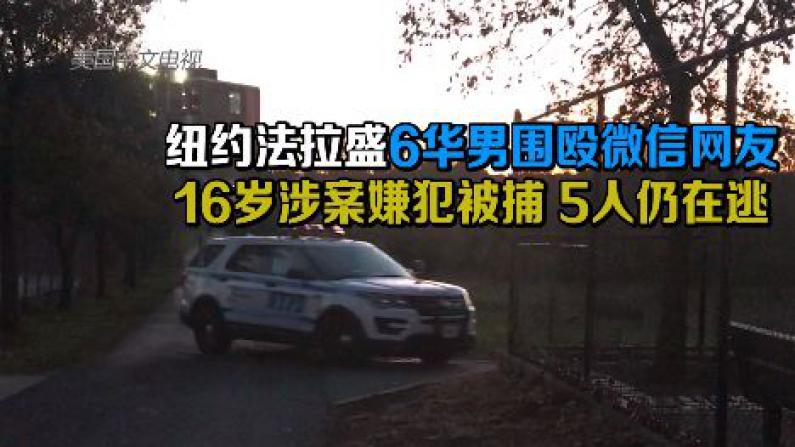 纽约法拉盛6华男围殴微信网友  16岁涉案嫌犯被捕 5人仍在逃