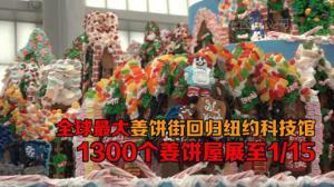 全球最大姜饼街回归纽约科技馆 1300个姜饼屋展至1/15