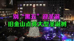 """别""""黑五""""迎圣诞 旧金山点亮大型圣诞树"""