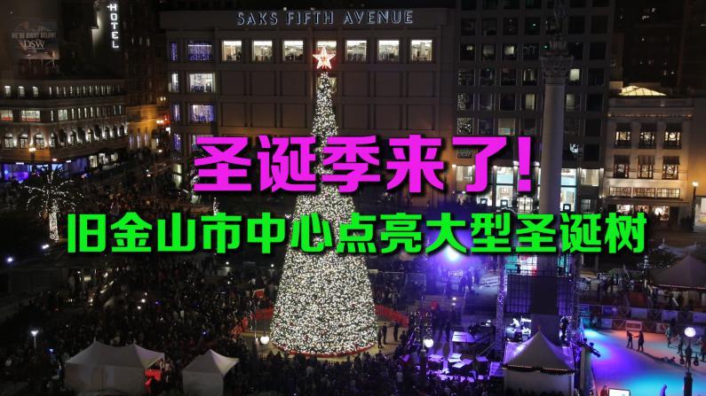 圣诞季来了! 旧金山市中心点亮大型圣诞树