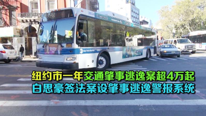 纽约市将设交通肇事逃逸警报系统