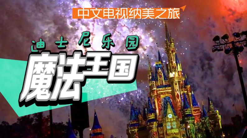 迪士尼:魔法王国身临其境
