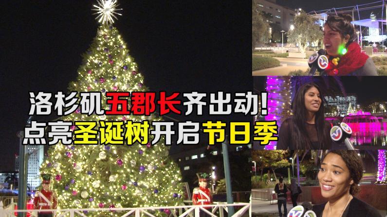 洛杉矶市中心圣诞树点亮 民众喜迎圣诞季