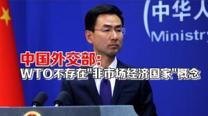 美拒承认中国市场经济地位 中国外交部回应