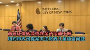 语言环境转变或致亲子沟通不畅 纽约市议员提案关注寄养儿童语言问题