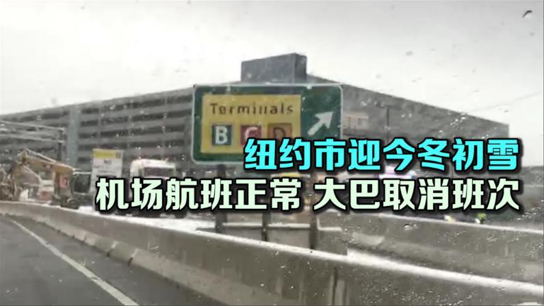 纽约迎今冬初雪 交通未受严重影响