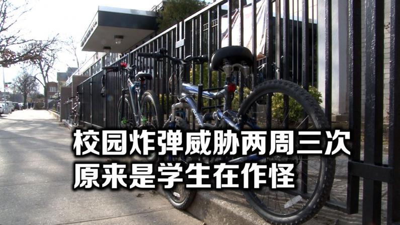 涉嫌制造校园炸弹威胁 纽约布鲁克林日裔高中生被捕
