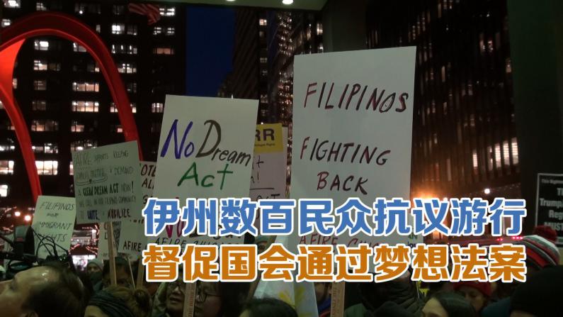 伊州数百民众抗议游行 督促国会通过梦想法案