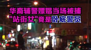 华裔辅警嫖娼当场被捕 站街女原是卧底警员