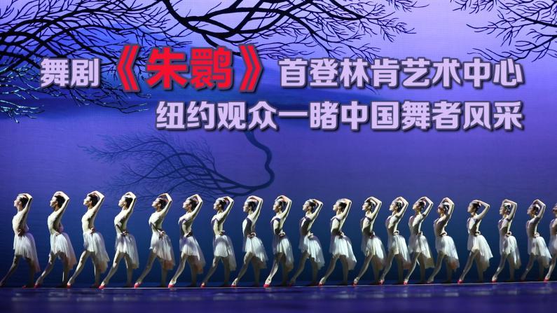 舞剧《朱鹮》首登林肯艺术中心 纽约观众一睹中国舞者风采