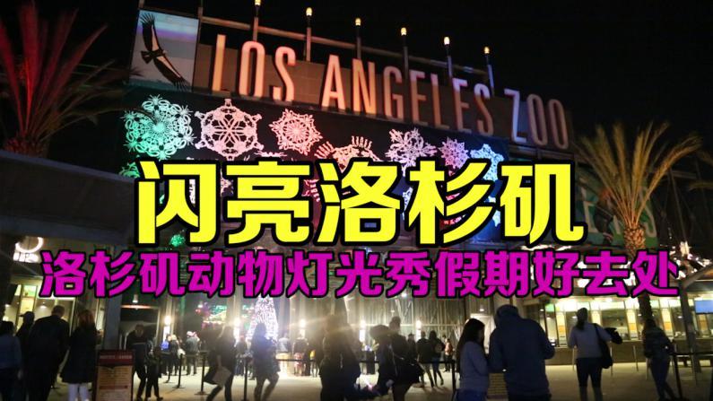 洛杉矶动物园灯光秀持续展出 再次点亮洛杉矶夜空