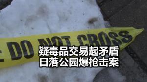 纽约日落公园西裔男遭射杀 疑毒品交易纠纷 枪手在逃