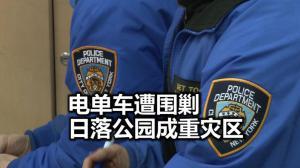 纽约日落公园警民会 66/72分局强调春节治安