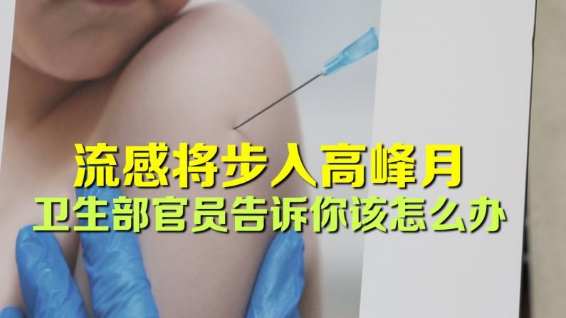 流感步入感染高峰期 公共卫生部告诉你该怎么办