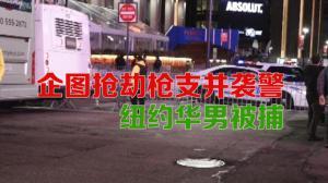 企图抢劫枪支并袭警  纽约曼哈顿华男被捕