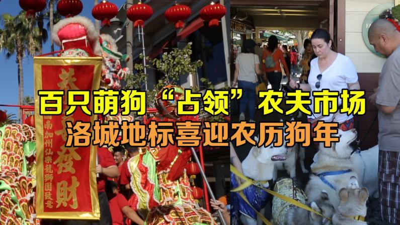 狗狗成主角!洛杉矶农夫市场办第二届新春庆祝展中国传统文化