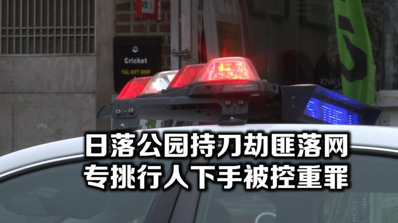 纽约日落公园街头劫案嫌犯被擒 持刀劫财华男被控一级抢劫罪