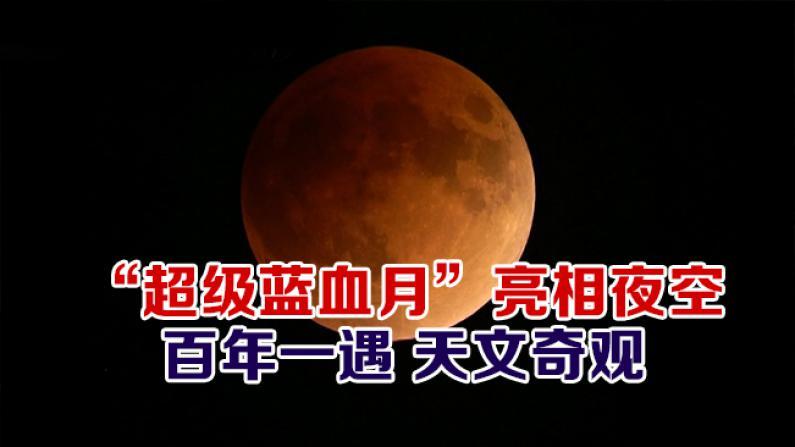 """""""超级蓝血月""""亮相夜空 百年一遇 天文奇观"""