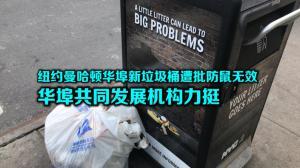 纽约曼哈顿华埠新垃圾桶遭批防鼠无效 华埠共同发展机构力挺