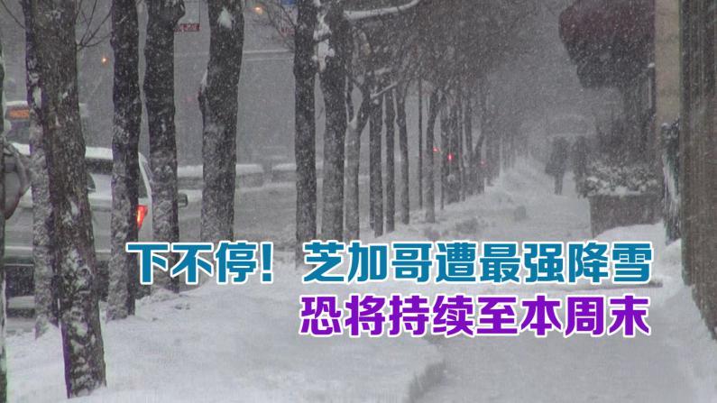 芝加哥最强降雪持续至本周末 近千航班取消