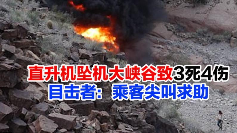 直升机坠机大峡谷致3死4伤 目击者:乘客尖叫求助