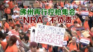 """佛州再行控枪集会 """"NRA=不负责"""""""