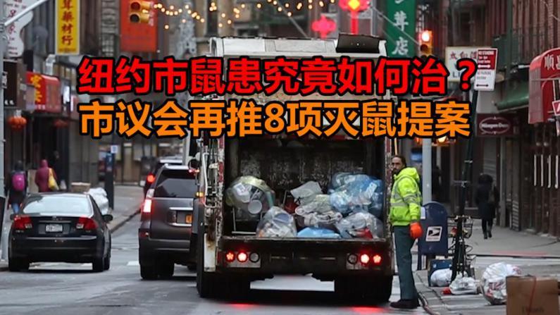 纽约市府新增8项灭鼠提案 7千元太阳能垃圾箱华埠水土不服 标本兼治才能灭绝鼠患