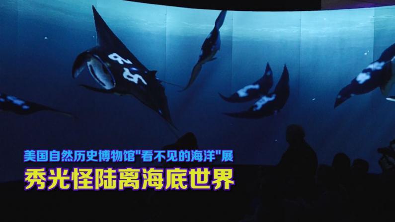 """""""看不见的海洋""""展现光怪陆离海底世界"""