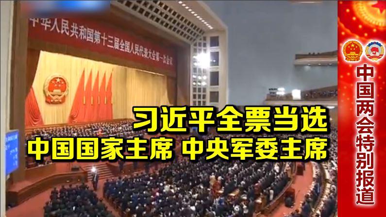 习近平全票当选中国国家主席、中央军委主席