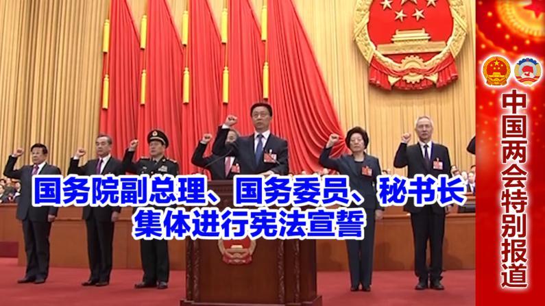国务院副总理、国务委员、秘书长 集体进行宪法宣誓
