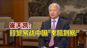 """崔天凯:美指中国""""窃取美国知识产权和技术""""属歧视"""