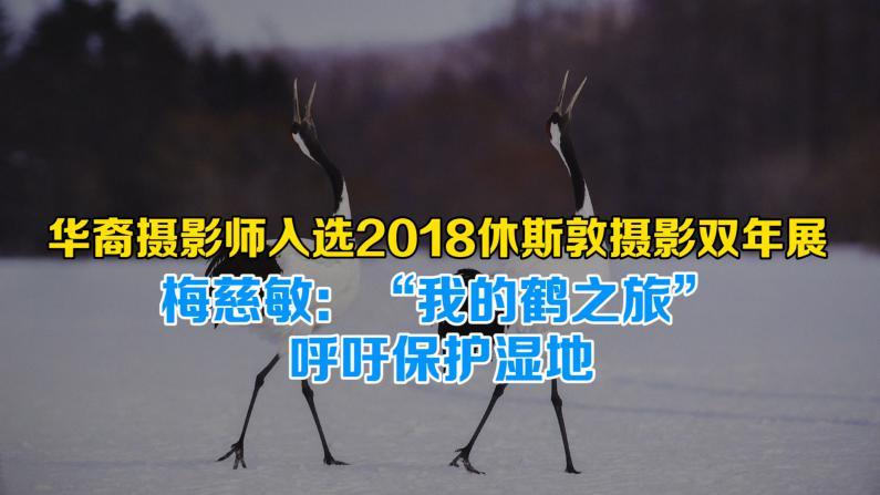 """华裔摄影师梅慈敏入选2018休斯敦摄影双年展   """"我的鹤之旅""""呼吁保护湿地"""